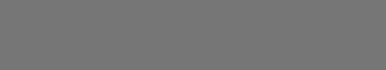 Worldwide Express_Grey (1).png